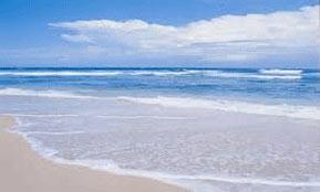 Sahuaro Shores Beach